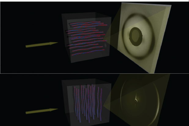 X-ray scattering. We use a fixed-anode mirror system to do small and large-angle x-ray scattering on to reveal order in and structure of lipids, proteins, and DNA. An example of scattering off of oriented DNA samples is shown above. Images by Luka Curovic.